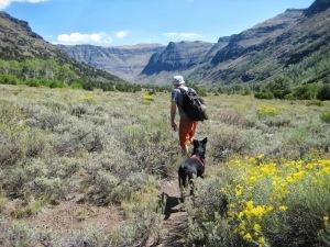 Big Indian Gorge Steens Oregon