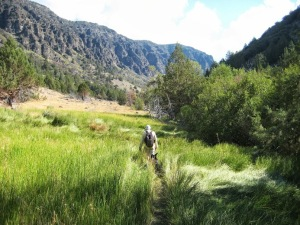 Little Blitzen Gorge trail