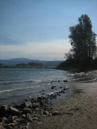 Jessa Slade Sandy River Delta Oregon dog hike