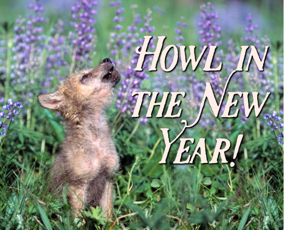 new-year-howl