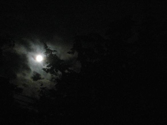 summer solstice full moon